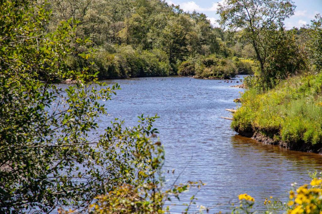 davis-west-virginia-blackwater-river_01